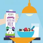 KOITA Low Fat Lactose Free Milk 1L - Pack of 12