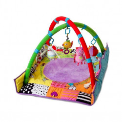 Taf Toys Play Gym New Born 90x90
