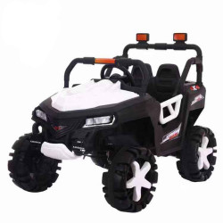 Motor Car Desert  Jeep 2 - White