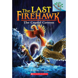 The Last Firehawk #2: The Crystal Caverns, 96 pages