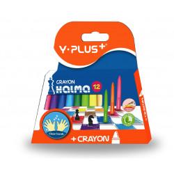 Y. Plus Halma Plastic Crayons, 12 Colors