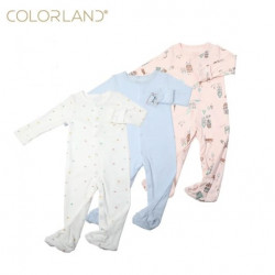 Colorland Long-Sleeve Baby Overall 3 Pieces In One Pack 6-9 Months,