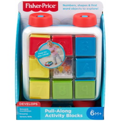 Fisher-Price Pull Along Blocks
