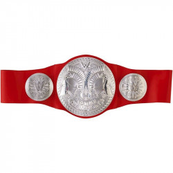 WWE Raw Tag Team Championship Belt