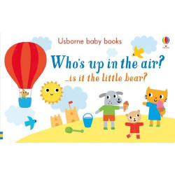 Usborne Who's up in the Air?