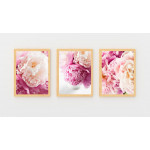 ExtraOrdinary Decorative Wood Framed Wall Art Prints, Peony Poster 2, A3 size