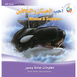 I Love Series - I love whales and Dolphins  - 24 Pages - 28x28