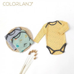 Colorland Baby Bodysuit 3 Pieces In One Pack, 3-6 Months