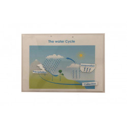 Big Kid's Book, The Water Cycle